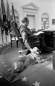 """O presidente dos EUA Gerald Ford e seu golden retriever """"Liberdade"""" no Salão Oval, em 1974"""
