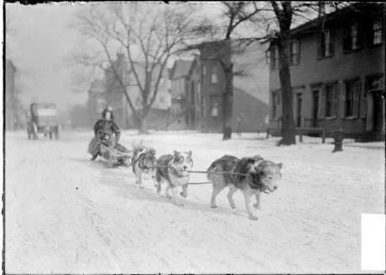 Um trenó puxado por cães leva uma mulher e seu filho pelas ruas de Chicago em 1904